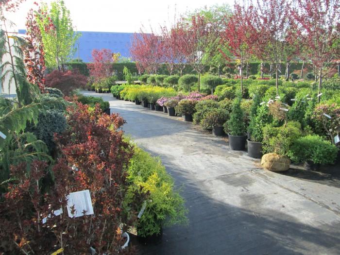 Garden Center | Tewksbury Florist & Greenery Inc.