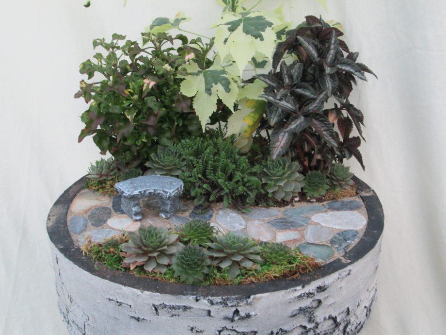 Mini Birch Garden 14inch