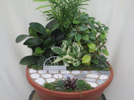 Mini Garden 12 inch bowl