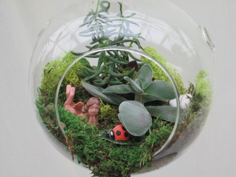 Round Globe 7 inch w/Succulants